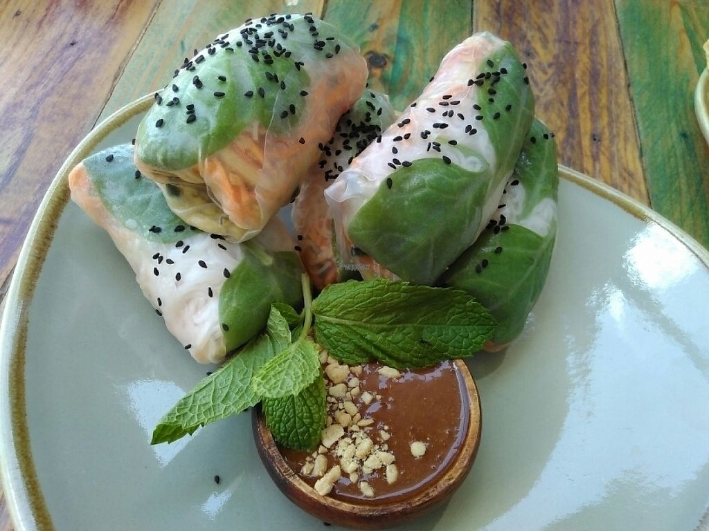 """Photo of Cafe Nurcha  by <a href=""""/members/profile/PamellaSousa"""">PamellaSousa</a> <br/>Vietnamese rolls <br/> December 4, 2016  - <a href='/contact/abuse/image/52248/197106'>Report</a>"""