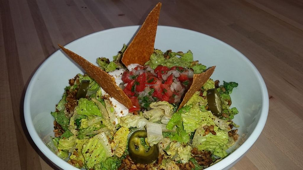 "Photo of CLOSED: The Springs  by <a href=""/members/profile/kenvegan"">kenvegan</a> <br/>raw taco salad <br/> December 21, 2014  - <a href='/contact/abuse/image/52286/88434'>Report</a>"