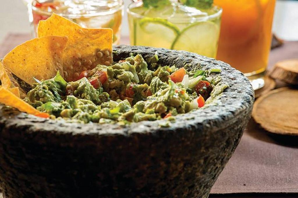 """Photo of Mago Grill and Cantina  by <a href=""""/members/profile/community"""">community</a> <br/>guacamole  <br/> October 29, 2014  - <a href='/contact/abuse/image/52360/84191'>Report</a>"""