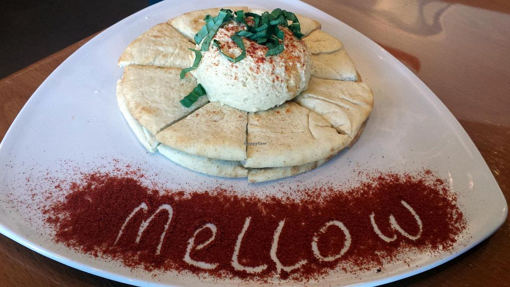Photo of Mellow Mushroom  by Navegante <br/>Hummus, Apr 2015 <br/> April 24, 2015  - <a href='/contact/abuse/image/52377/100111'>Report</a>