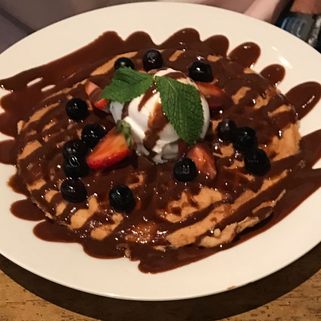 "Photo of The Hungry Herbivore  by <a href=""/members/profile/Remerson13"">Remerson13</a> <br/>The Vegan Waffle <br/> February 4, 2017  - <a href='/contact/abuse/image/52388/222457'>Report</a>"