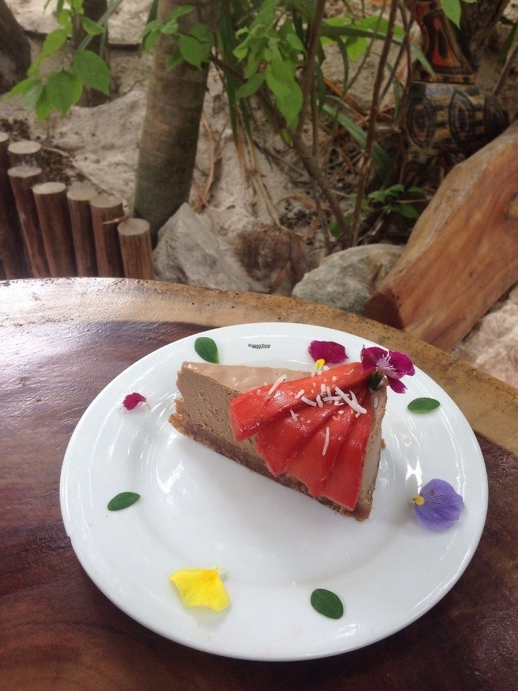 "Photo of Raw Love - Ahau Tulum  by <a href=""/members/profile/AdanMessineo"">AdanMessineo</a> <br/>Mamey spice pie <br/> November 15, 2016  - <a href='/contact/abuse/image/52416/190275'>Report</a>"
