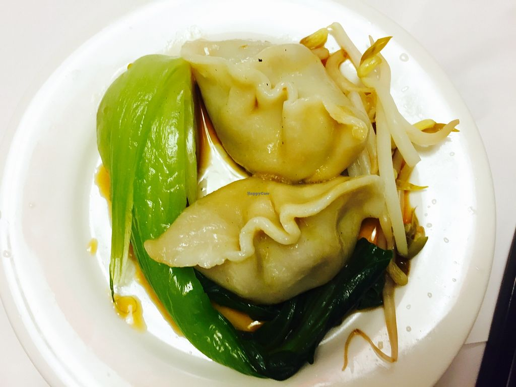 "Photo of Chanhouse Healthy Vegetarian Option  by <a href=""/members/profile/karlaess"">karlaess</a> <br/>Dumplings <br/> March 12, 2016  - <a href='/contact/abuse/image/52471/139751'>Report</a>"