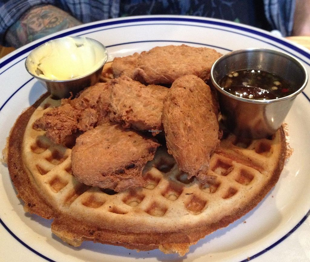 Photo of Palomino Bar  by RamblingVegans <br/>Vegan chicken & waffles with spicy maple syrup <br/> March 1, 2014  - <a href='/contact/abuse/image/5248/65032'>Report</a>