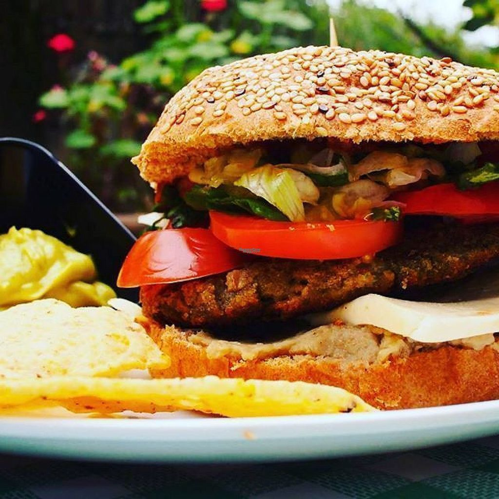 "Photo of El Punto Veggie  by <a href=""/members/profile/community5"">community5</a> <br/>Vegan burger <br/> March 17, 2017  - <a href='/contact/abuse/image/52530/237650'>Report</a>"
