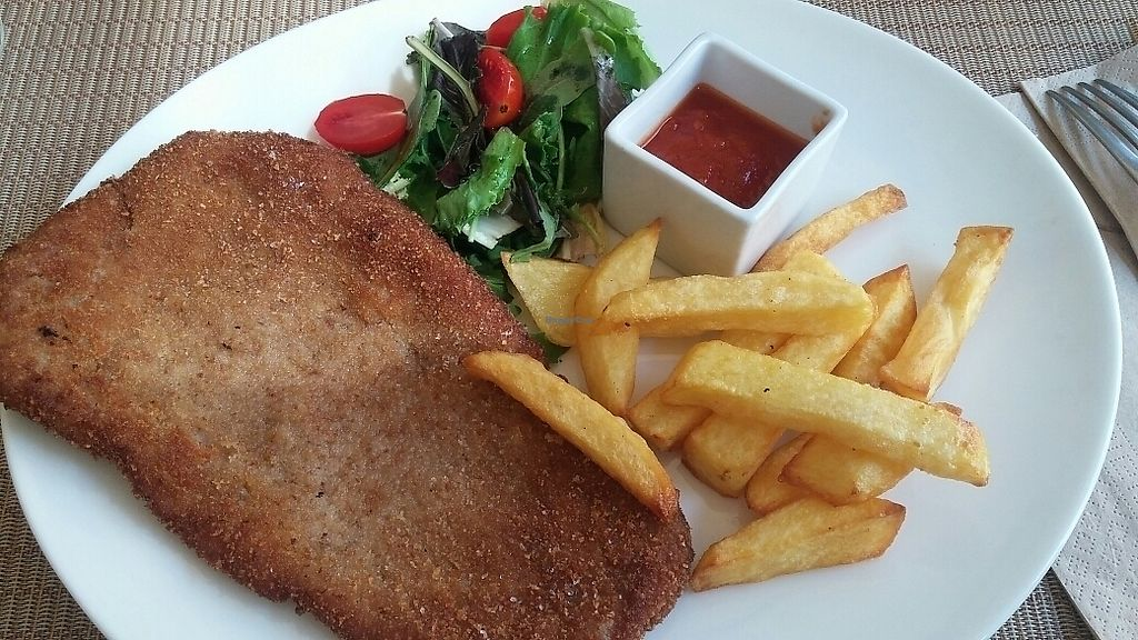 """Photo of Cor Verd  by <a href=""""/members/profile/mercebanser"""">mercebanser</a> <br/>seitan and fried potatos <br/> August 24, 2017  - <a href='/contact/abuse/image/52534/296631'>Report</a>"""