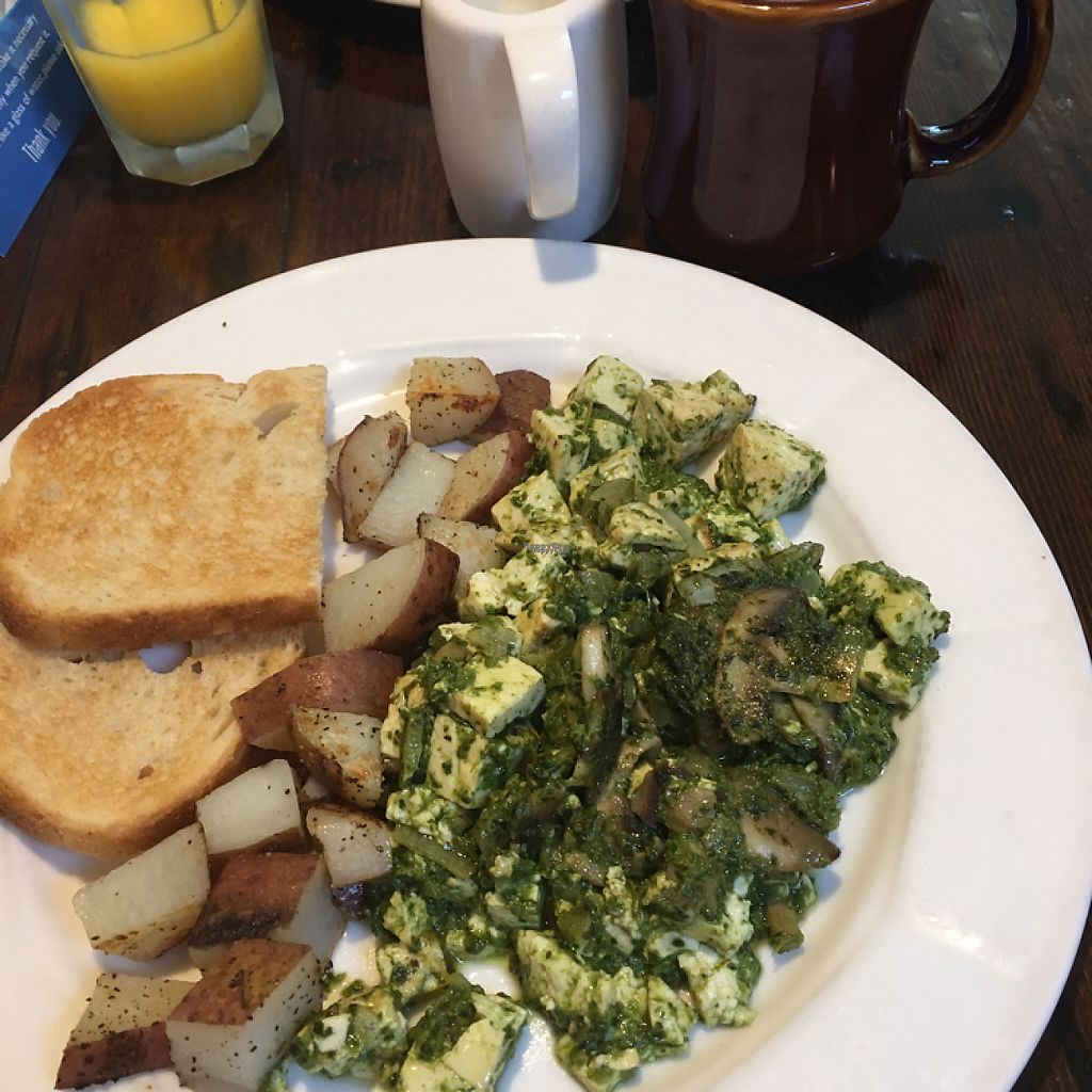 """Photo of Tillie Gort's Cafe  by <a href=""""/members/profile/Benedict_Avocado"""">Benedict_Avocado</a> <br/>pesto scramble  <br/> January 14, 2017  - <a href='/contact/abuse/image/5253/211971'>Report</a>"""