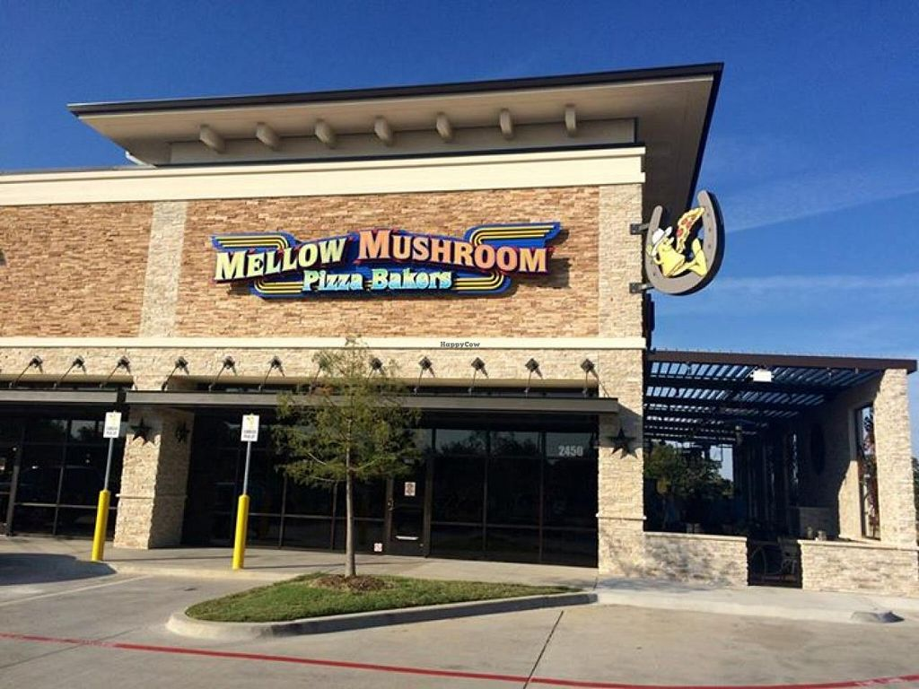 """Photo of Mellow Mushroom  by <a href=""""/members/profile/community"""">community</a> <br/>Mellow Mushroom <br/> November 3, 2014  - <a href='/contact/abuse/image/52550/84537'>Report</a>"""