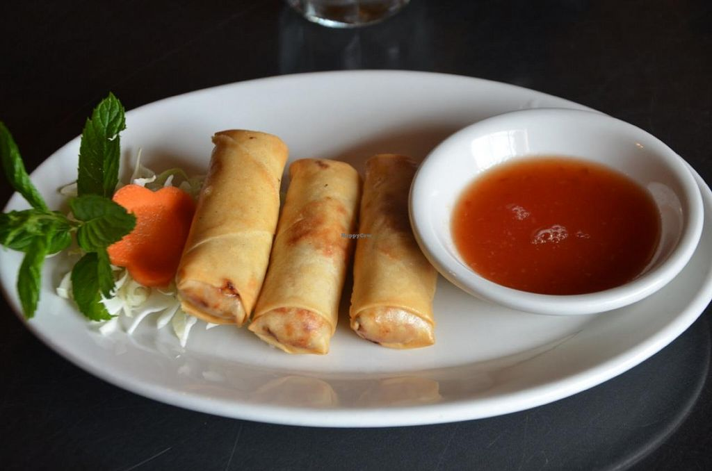 """Photo of Kati Thai Cuisine  by <a href=""""/members/profile/Anita%20Good%20Meal"""">Anita Good Meal</a> <br/>Veggie Spring Rolls, rolled in-house <br/> October 30, 2014  - <a href='/contact/abuse/image/52641/84214'>Report</a>"""