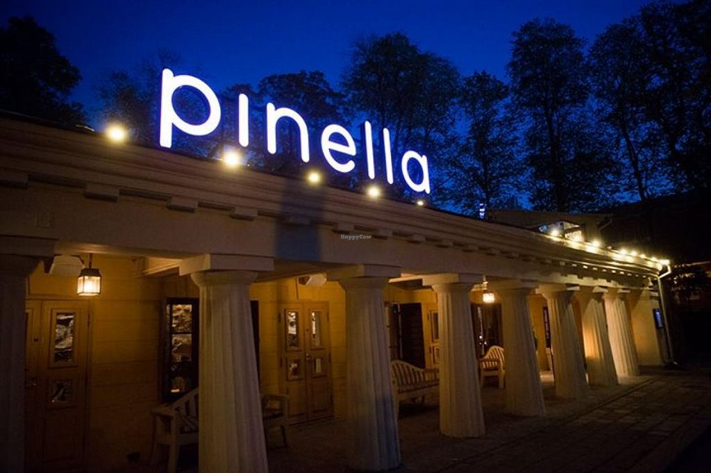"""Photo of Pinella  by <a href=""""/members/profile/community"""">community</a> <br/>Pinella <br/> November 5, 2014  - <a href='/contact/abuse/image/52669/84779'>Report</a>"""