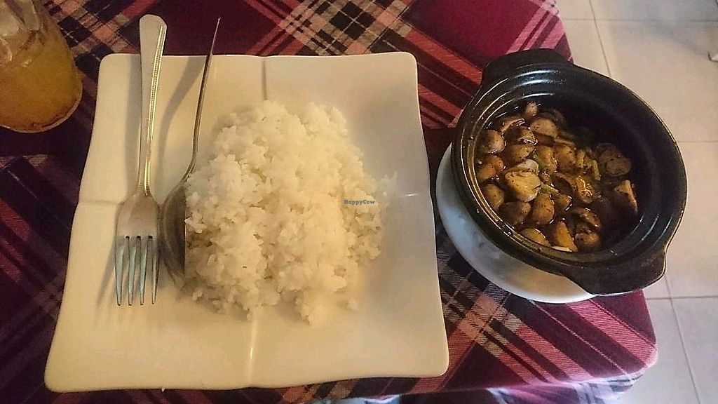 """Photo of Bookworm's Coffee  by <a href=""""/members/profile/jesse558"""">jesse558</a> <br/>mushroom n rice <br/> November 6, 2017  - <a href='/contact/abuse/image/52690/322395'>Report</a>"""