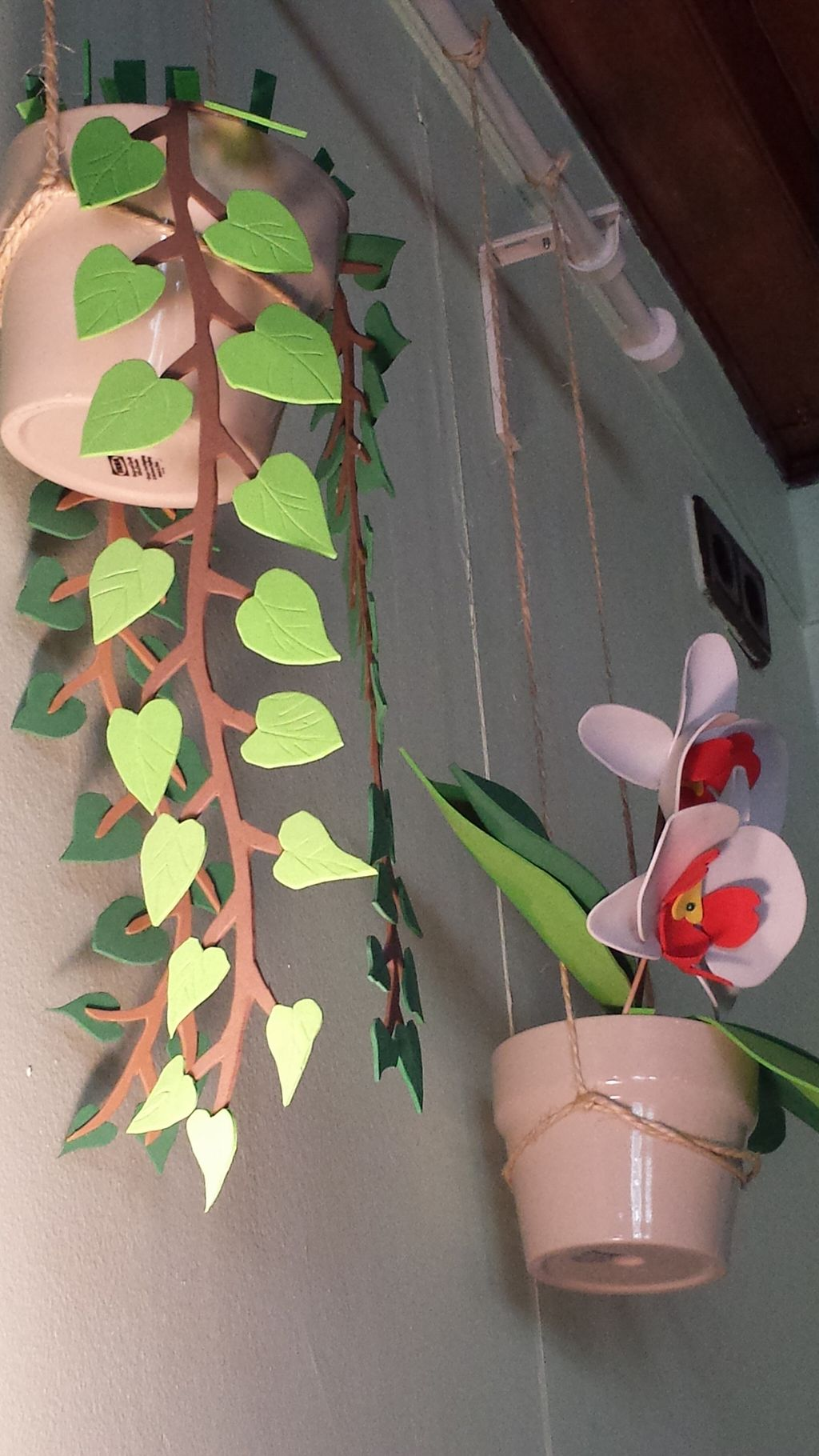 """Photo of Brotes Verdes  by <a href=""""/members/profile/NievesR"""">NievesR</a> <br/>Nice fake plants on the walls <br/> May 17, 2016  - <a href='/contact/abuse/image/52695/149486'>Report</a>"""