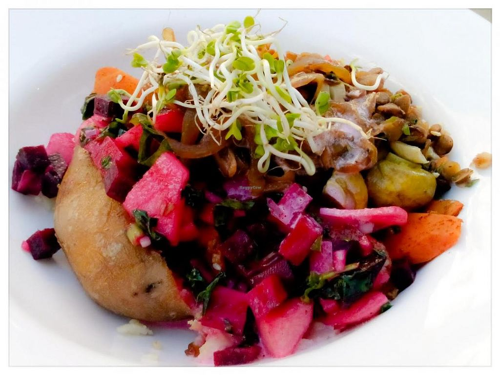"Photo of Patiti Patati  by <a href=""/members/profile/Kat007"">Kat007</a> <br/>Kumpir with carrots, lentil salad, beetroot-apple salad, mushrooms, sweet onions and sprouds <br/> November 18, 2014  - <a href='/contact/abuse/image/52769/85964'>Report</a>"