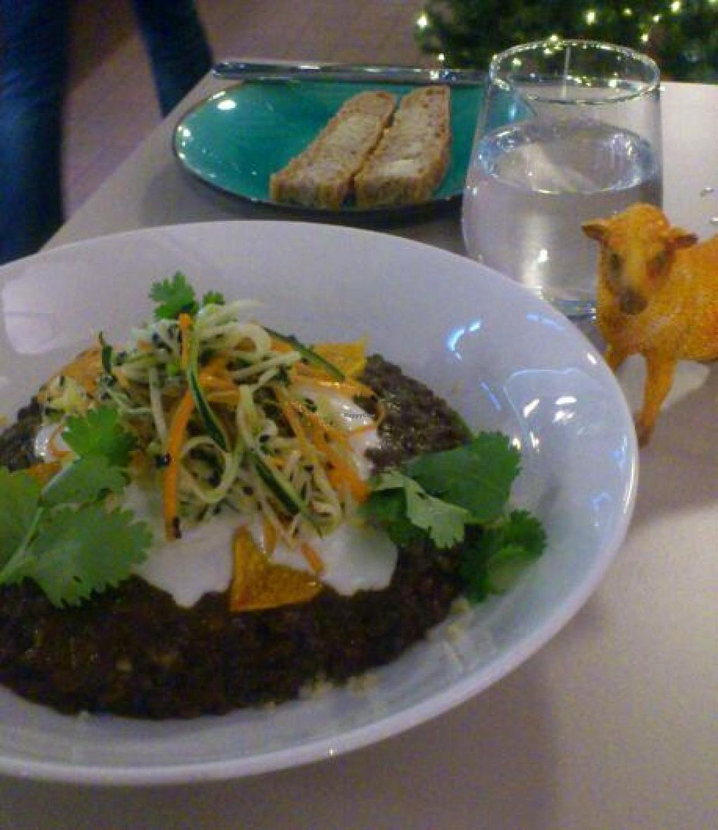 """Photo of Roots Kitchen  by <a href=""""/members/profile/vagabond%20baker"""">vagabond baker</a> <br/>delicious lentil curry at Roots Kitchen <br/> December 8, 2014  - <a href='/contact/abuse/image/52926/87476'>Report</a>"""