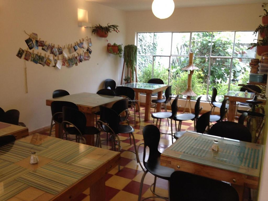 "Photo of La Huerta del Chef  by <a href=""/members/profile/Laura%20Grainger"">Laura Grainger</a> <br/>Dining area <br/> November 23, 2014  - <a href='/contact/abuse/image/53028/86316'>Report</a>"