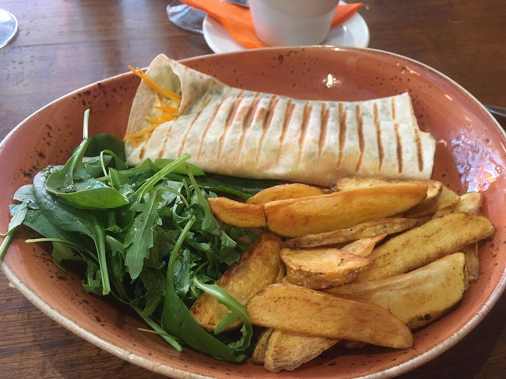 """Photo of Fat Pumpkin  by <a href=""""/members/profile/SuzyJones"""">SuzyJones</a> <br/>humus wrap  <br/> August 12, 2017  - <a href='/contact/abuse/image/53101/291934'>Report</a>"""