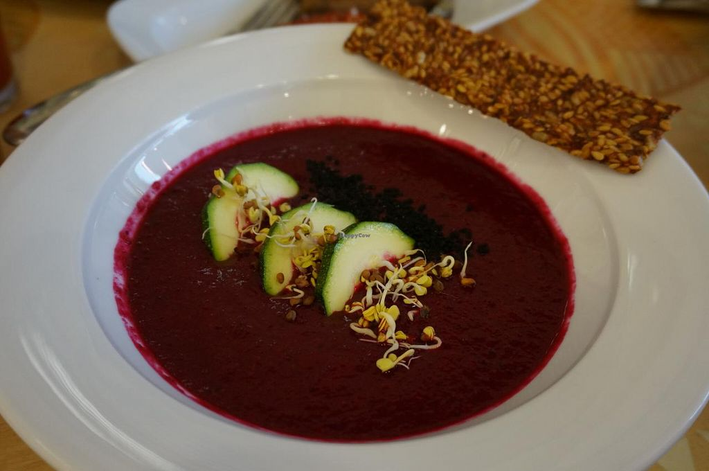 """Photo of The Beginnings - TC Spice  by <a href=""""/members/profile/Ricardo"""">Ricardo</a> <br/>Beetroot soup (Vegan).  <br/> July 22, 2015  - <a href='/contact/abuse/image/53123/110464'>Report</a>"""