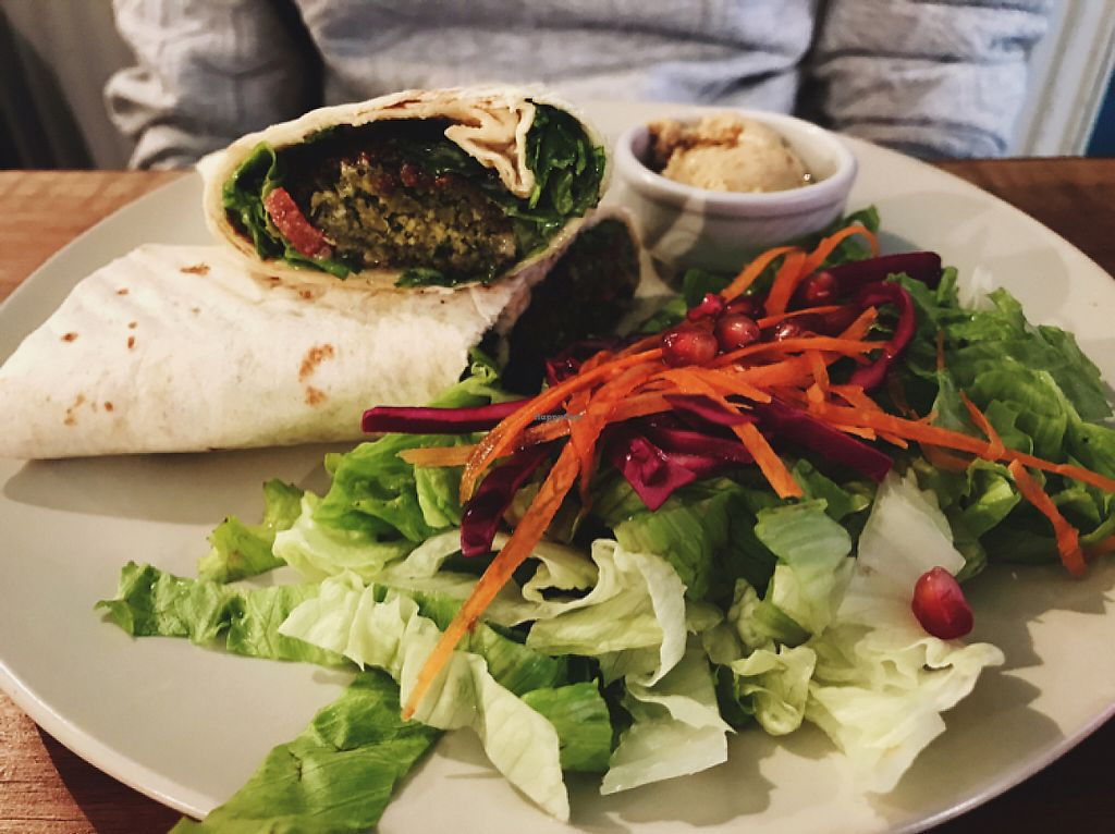 """Photo of Veganka  by <a href=""""/members/profile/veganoteacher"""">veganoteacher</a> <br/>Falafel <br/> May 6, 2017  - <a href='/contact/abuse/image/53145/256135'>Report</a>"""