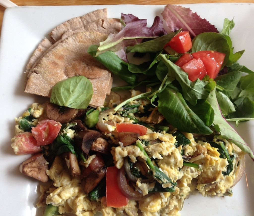 """Photo of Juice and Java  by <a href=""""/members/profile/survivalpoet"""">survivalpoet</a> <br/>veggie eggs  <br/> November 20, 2015  - <a href='/contact/abuse/image/5314/196741'>Report</a>"""