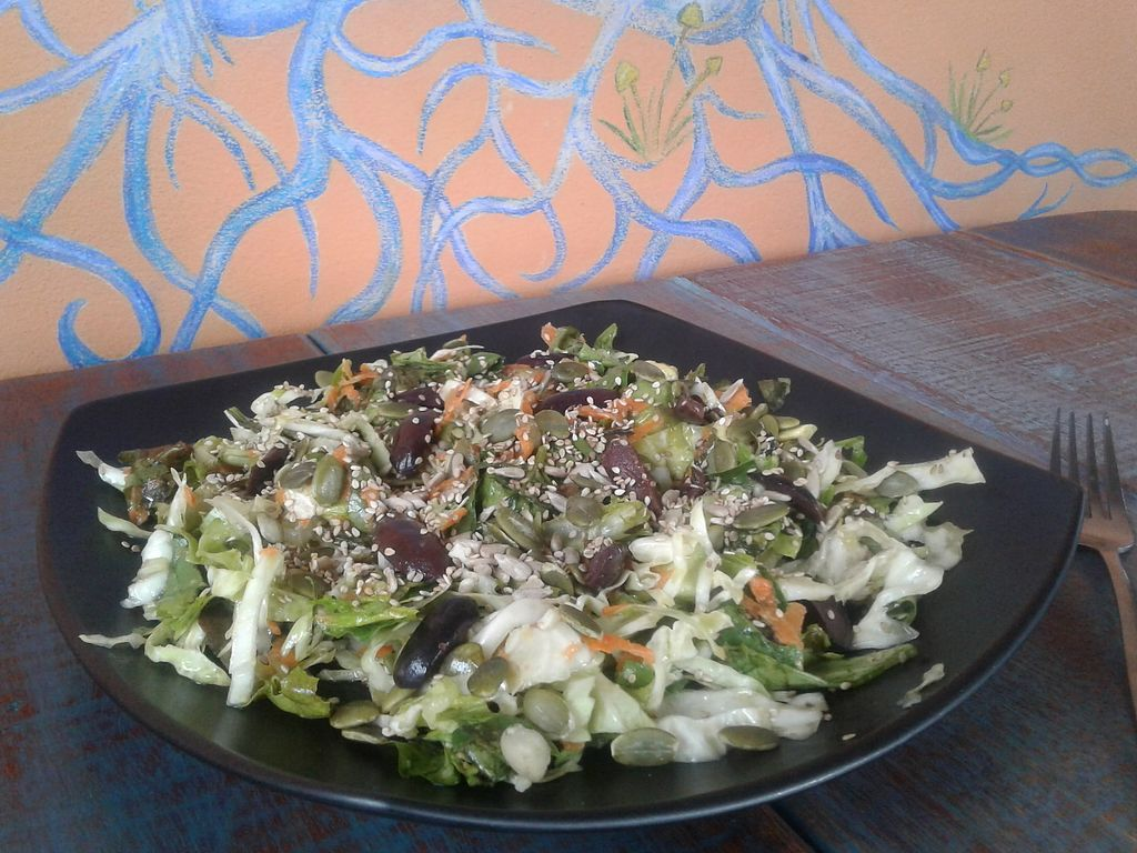 "Photo of Akasha Home Restaurant  by <a href=""/members/profile/AnnaWacker"">AnnaWacker</a> <br/>An amazing greek authentic vegan salad. Organic, green, raw and delicious! <br/> February 17, 2018  - <a href='/contact/abuse/image/53254/360290'>Report</a>"