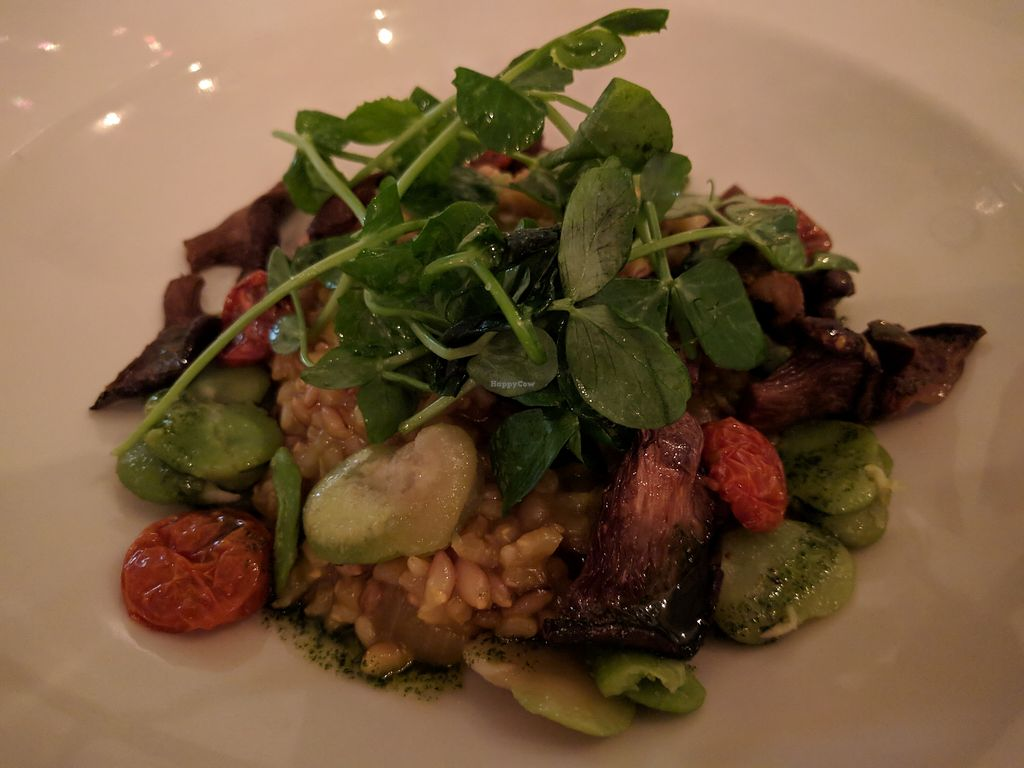 "Photo of Natural Gourmet Institute  by <a href=""/members/profile/steveveg"">steveveg</a> <br/>Entree - risotto with oyster mushrooms <br/> April 7, 2018  - <a href='/contact/abuse/image/53255/381964'>Report</a>"