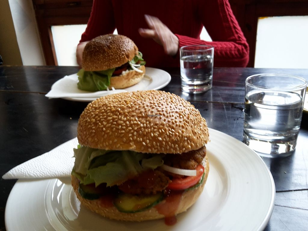 """Photo of Green Fusion Foodbar  by <a href=""""/members/profile/Makai%20Tamas"""">Makai Tamas</a> <br/>These are my favorite burgers in the World right now <br/> March 10, 2016  - <a href='/contact/abuse/image/53271/139488'>Report</a>"""