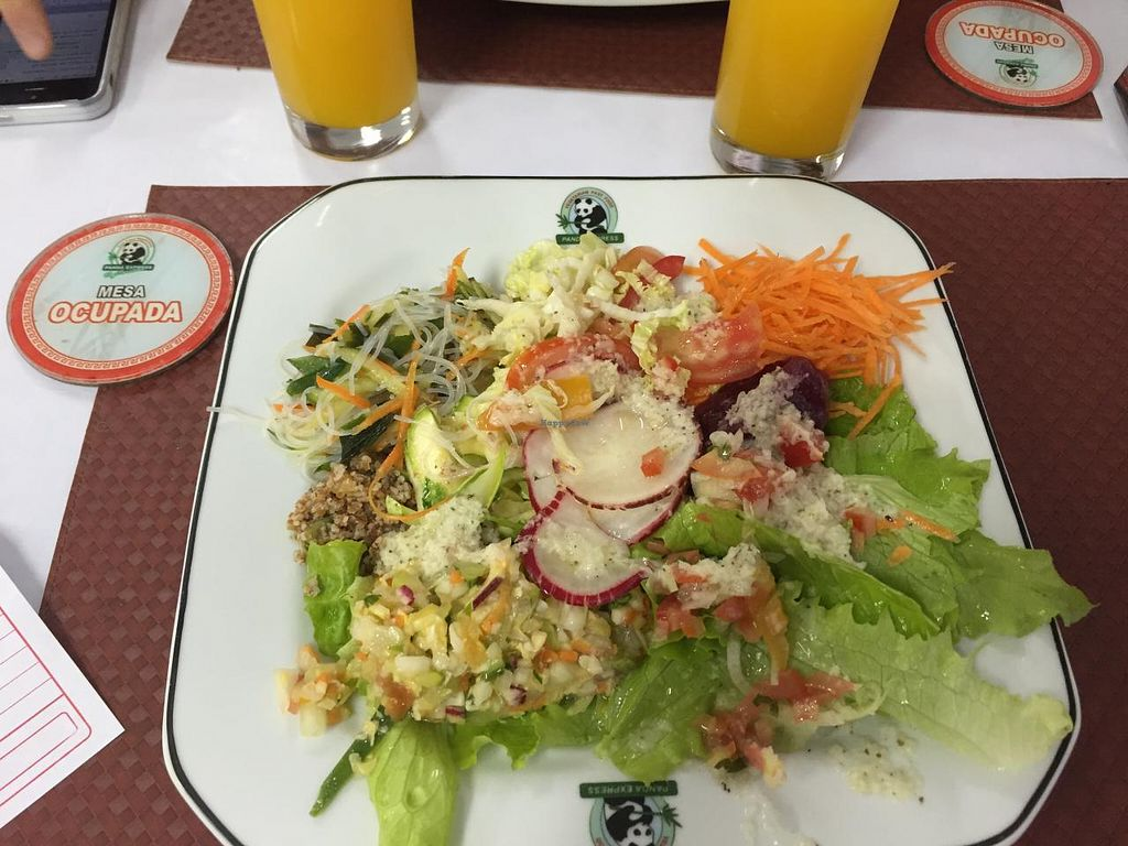 "Photo of Panda Vegan Restaurant  by <a href=""/members/profile/Paolla"">Paolla</a> <br/>Some of the salad´s options <br/> July 26, 2015  - <a href='/contact/abuse/image/53277/111069'>Report</a>"