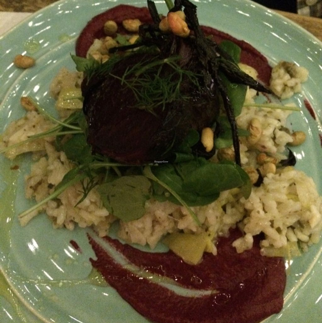 "Photo of CLOSED: Painted Elephant  by <a href=""/members/profile/Love%20to%20munch"">Love to munch</a> <br/>beetroot risotto plate  <br/> February 18, 2016  - <a href='/contact/abuse/image/53332/136805'>Report</a>"