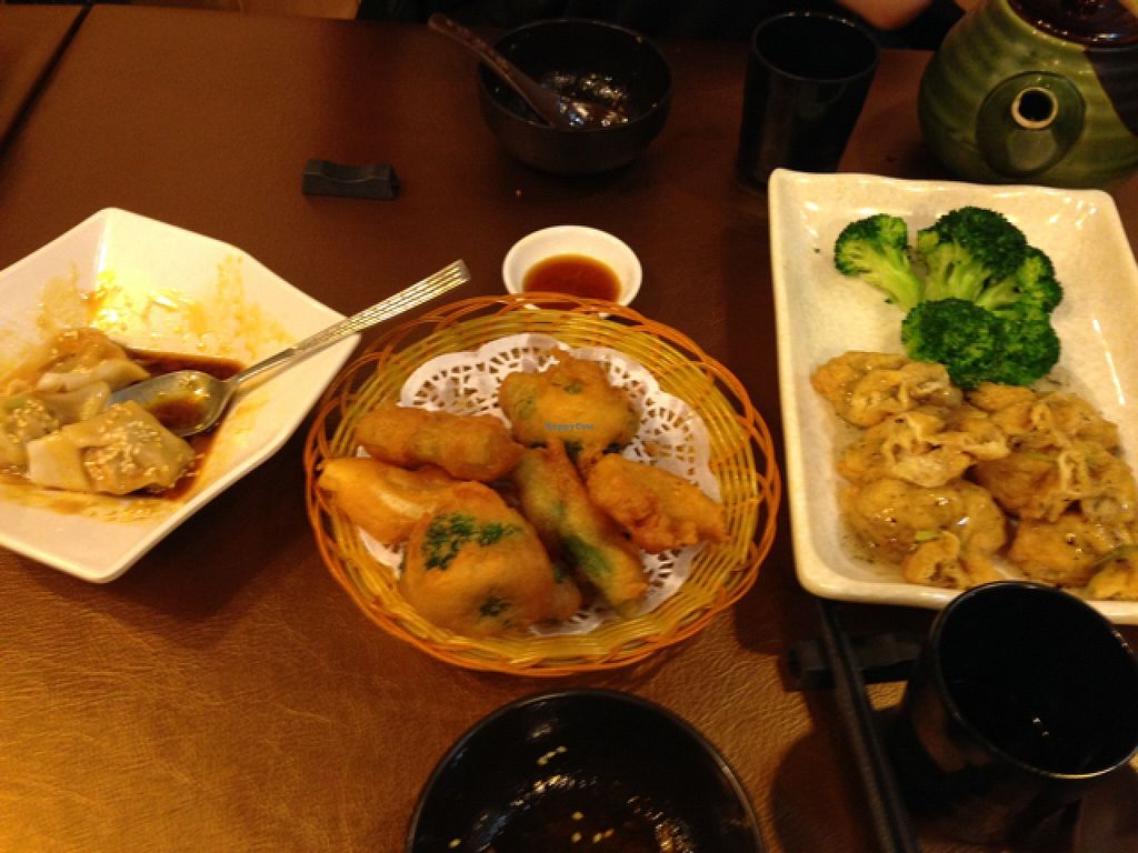 """Photo of Veggie Family  by <a href=""""/members/profile/Origamiwolf"""">Origamiwolf</a> <br/>deep fried broccoli and great dumplings <br/> January 16, 2016  - <a href='/contact/abuse/image/53426/132671'>Report</a>"""