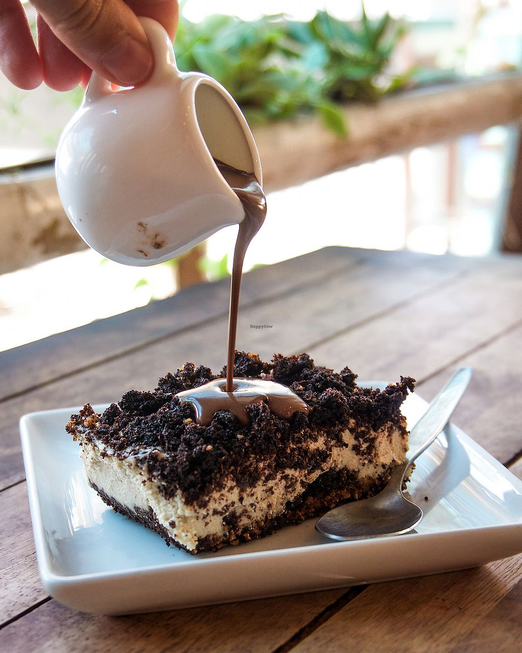 "Photo of Eat Co  by <a href=""/members/profile/KirstenK"">KirstenK</a> <br/>Oreo Coffee Cheesecake (with chocolate sauce) <br/> December 16, 2017  - <a href='/contact/abuse/image/53484/336053'>Report</a>"
