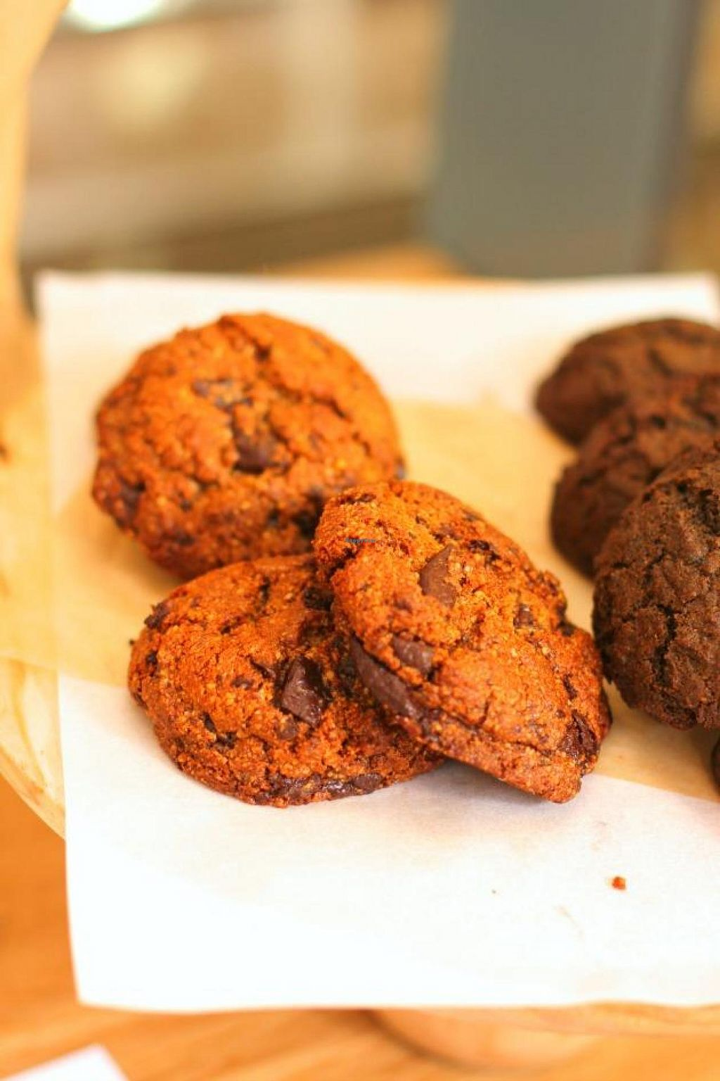 "Photo of CLOSED: Seed + Salt  by <a href=""/members/profile/aveganobsession"">aveganobsession</a> <br/>chocolate chip and molasses ginger cookies.  so good <br/> December 2, 2014  - <a href='/contact/abuse/image/53518/87083'>Report</a>"