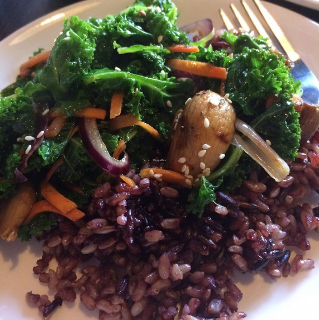 """Photo of Indochine Vegan  by <a href=""""/members/profile/MickeyYost"""">MickeyYost</a> <br/>kale and mushroom with brown rice <br/> May 11, 2017  - <a href='/contact/abuse/image/53542/257699'>Report</a>"""