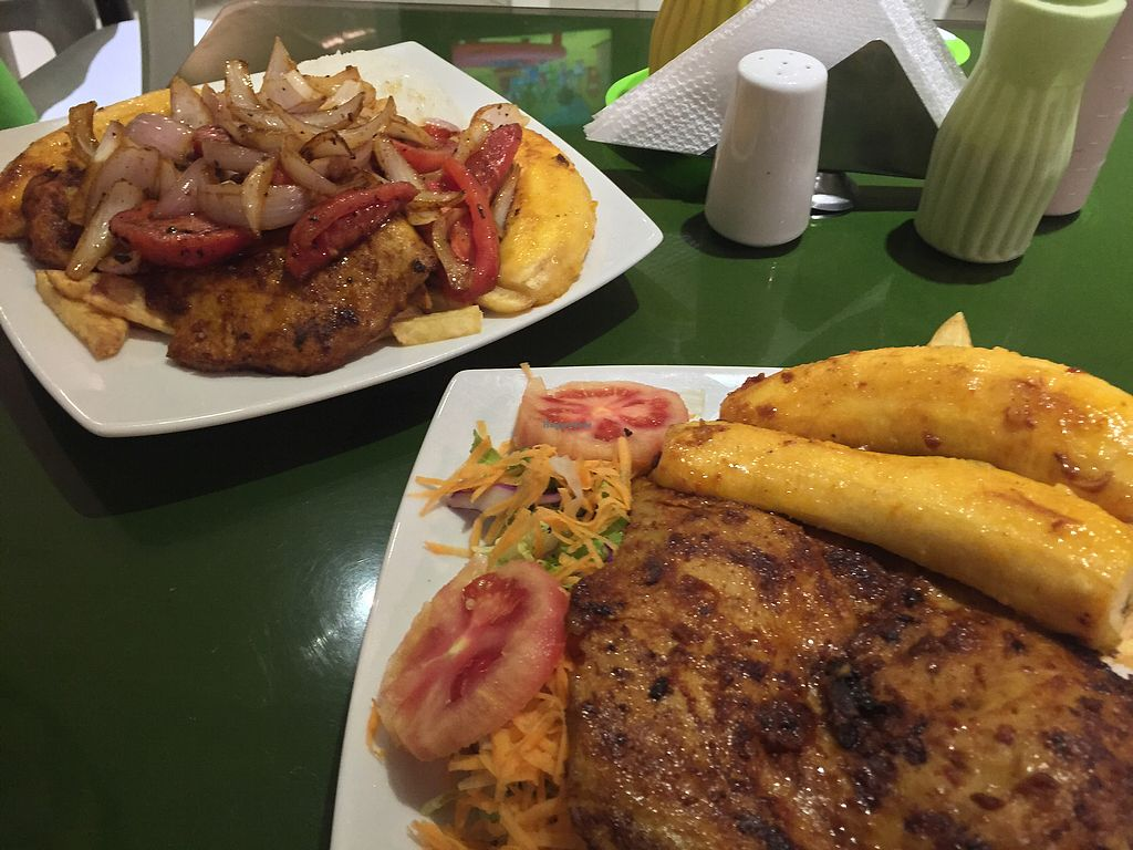 "Photo of Pippala Restaurante Vegetariano  by <a href=""/members/profile/Dianebg"">Dianebg</a> <br/>Marinated soy meat, plantains, rice, fries and sautéed onions  <br/> October 29, 2017  - <a href='/contact/abuse/image/53554/319856'>Report</a>"