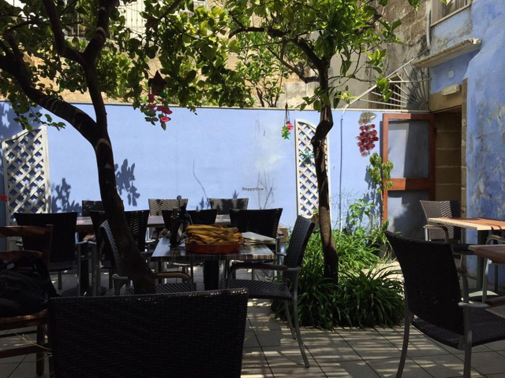 "Photo of CLOSED: Il Giardino Segreto  by <a href=""/members/profile/L_Almo_Clelarco"">L_Almo_Clelarco</a> <br/>The garden  <br/> June 24, 2015  - <a href='/contact/abuse/image/53555/107183'>Report</a>"