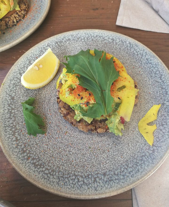 "Photo of M Cafe  by <a href=""/members/profile/Trinidad"">Trinidad</a> <br/>Brown rice and quinoa bread, with avocado <br/> April 16, 2018  - <a href='/contact/abuse/image/5363/386929'>Report</a>"