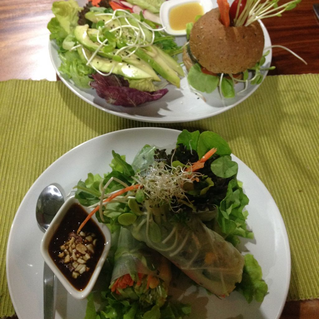 """Photo of Bubbles Live  by <a href=""""/members/profile/VeganEllise"""">VeganEllise</a> <br/>veggieburger and ricepaper rolls  <br/> December 14, 2015  - <a href='/contact/abuse/image/53652/128406'>Report</a>"""