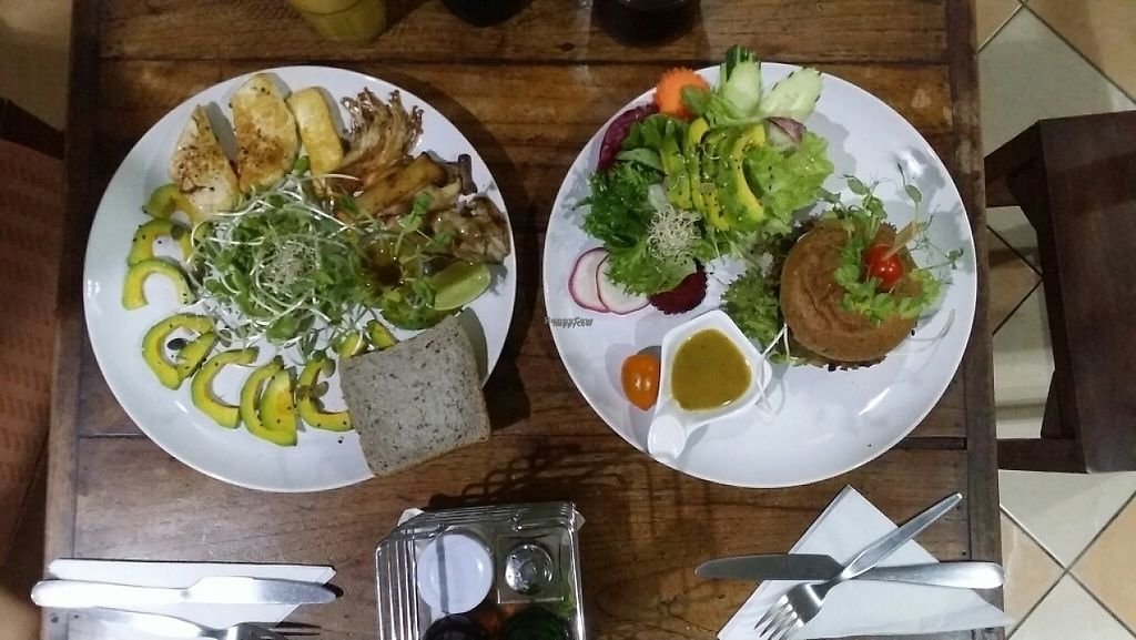 """Photo of Bubbles Live  by <a href=""""/members/profile/Mike%20Munsie"""">Mike Munsie</a> <br/>mushroom salad & vegi burger + avo <br/> March 20, 2017  - <a href='/contact/abuse/image/53652/238834'>Report</a>"""