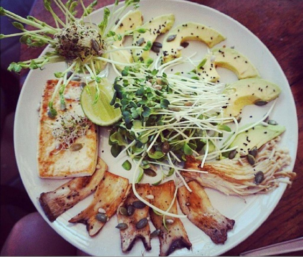 """Photo of Bubbles Live  by <a href=""""/members/profile/Anniegracexx"""">Anniegracexx</a> <br/>tofu mushroom avocado platter! wow!  <br/> February 5, 2015  - <a href='/contact/abuse/image/53652/92302'>Report</a>"""