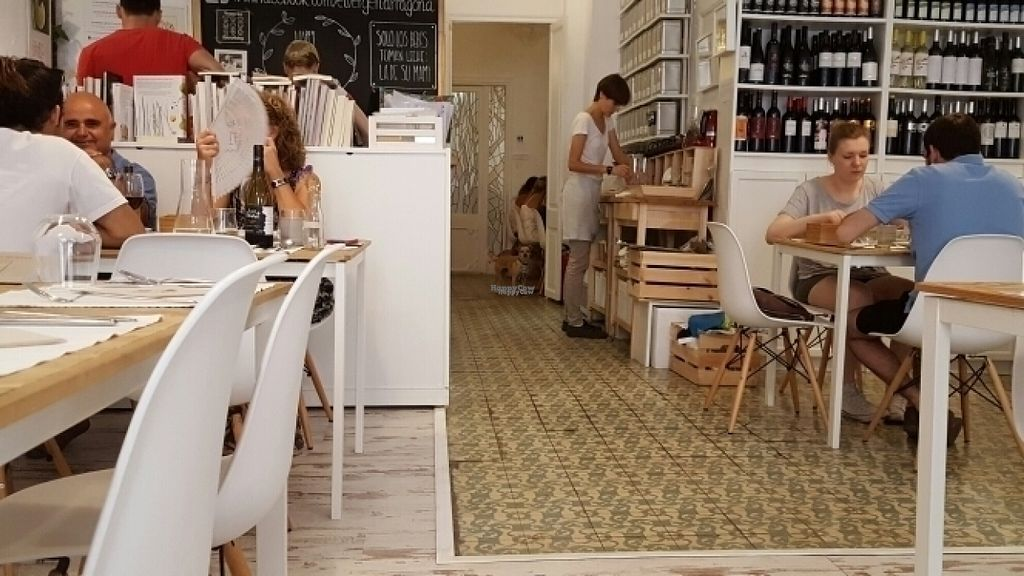 """Photo of El Vergel Veggie Restaurant  by <a href=""""/members/profile/chagua"""">chagua</a> <br/>Dogfriendly <br/> August 20, 2016  - <a href='/contact/abuse/image/53682/170211'>Report</a>"""