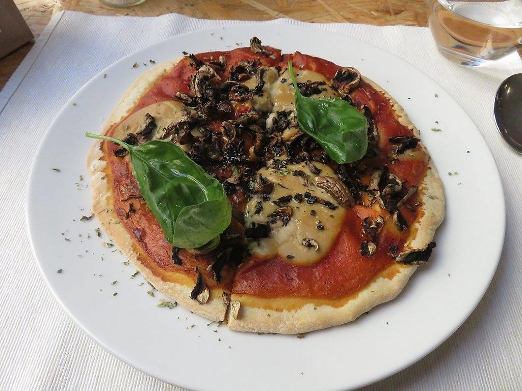 """Photo of El Vergel Veggie Restaurant  by <a href=""""/members/profile/Pinelele"""">Pinelele</a> <br/>nut-based cheese, mushrooms and basil pizza <br/> May 22, 2017  - <a href='/contact/abuse/image/53682/261547'>Report</a>"""