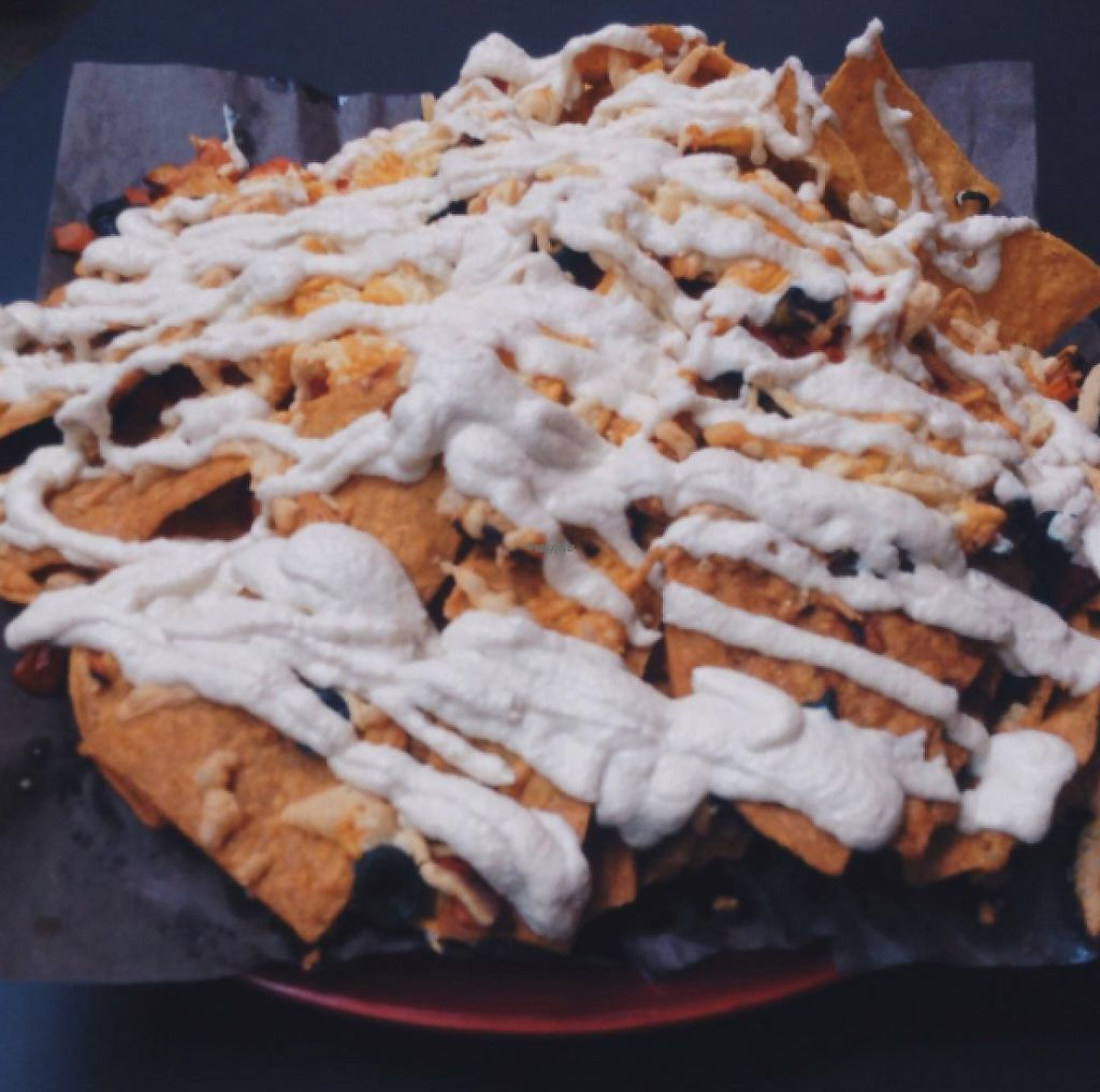 """Photo of Democracy  by <a href=""""/members/profile/vagabondvegan"""">vagabondvegan</a> <br/>Some of the best nachos I've ever had.  <br/> January 28, 2017  - <a href='/contact/abuse/image/53733/218211'>Report</a>"""