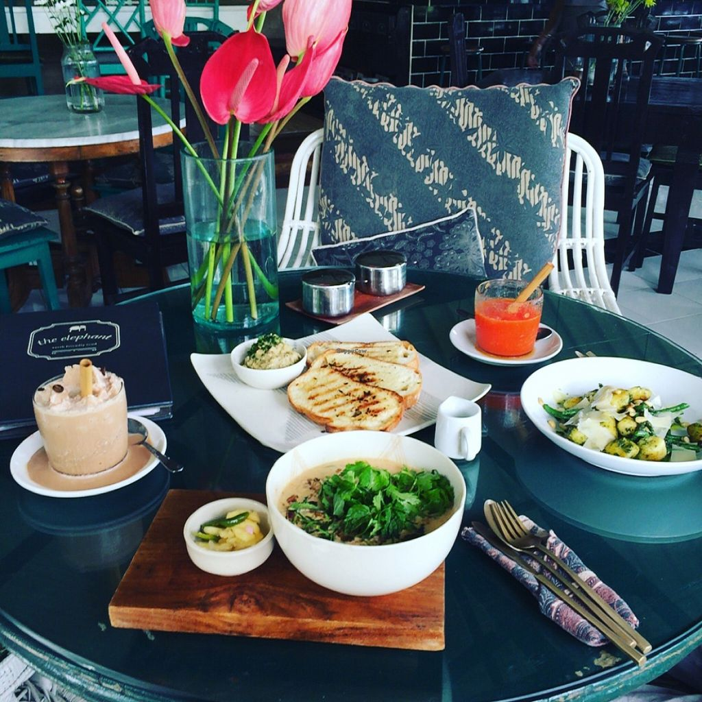 """Photo of Elephant Cafe  by <a href=""""/members/profile/EmilySmith93"""">EmilySmith93</a> <br/>coconut soup, garlic bread with eggplant dip, frappacino with cashew milk, papaya frappe, and pest gnocchi (partners dish vegetarian not vegan) <br/> March 2, 2016  - <a href='/contact/abuse/image/53736/138456'>Report</a>"""