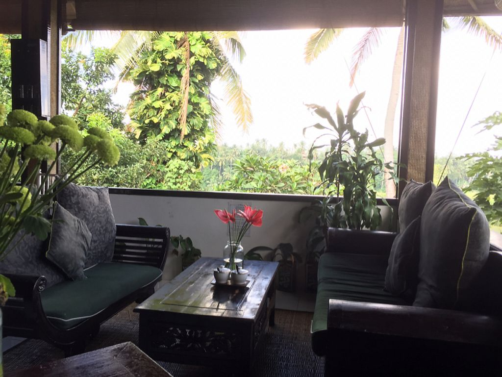 """Photo of Elephant Cafe  by <a href=""""/members/profile/SusanRoberts"""">SusanRoberts</a> <br/>seats with a view <br/> May 22, 2017  - <a href='/contact/abuse/image/53736/261285'>Report</a>"""
