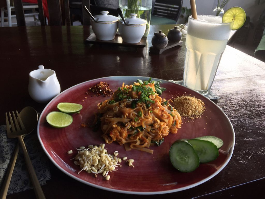 """Photo of Elephant Cafe  by <a href=""""/members/profile/SusanRoberts"""">SusanRoberts</a> <br/>vegan pad Thai and blended lime juice <br/> May 22, 2017  - <a href='/contact/abuse/image/53736/261287'>Report</a>"""