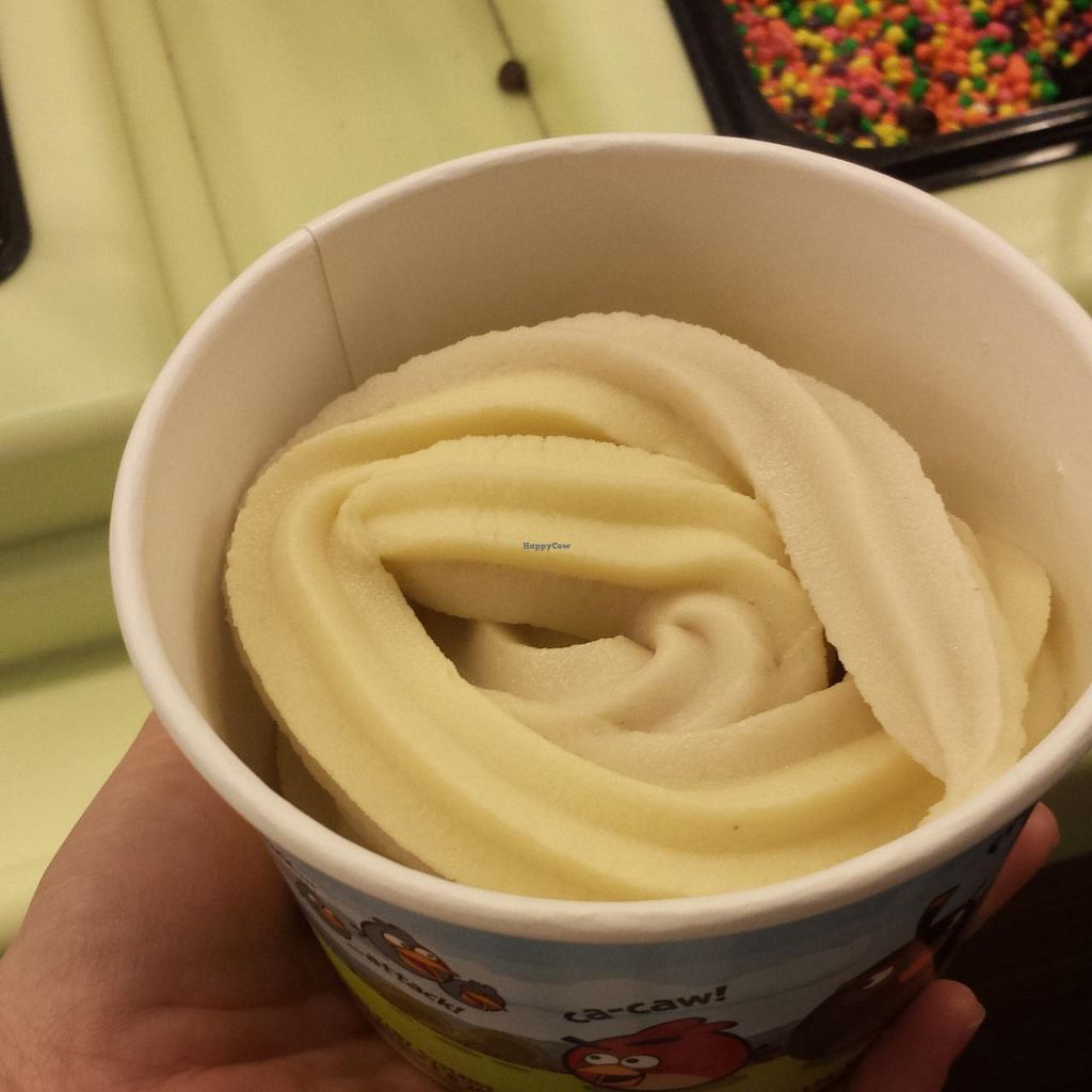 "Photo of TCBY  by <a href=""/members/profile/vegbaker"">vegbaker</a> <br/>Silk Vanilla /Nog swirl vegan frozen yogurt  <br/> December 13, 2014  - <a href='/contact/abuse/image/53793/87902'>Report</a>"