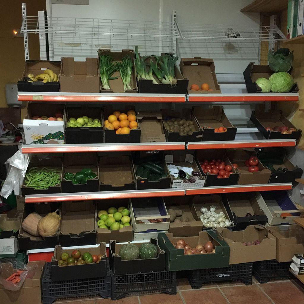 """Photo of CLOSED: Etenoha  by <a href=""""/members/profile/MyVeganJoy"""">MyVeganJoy</a> <br/>organic non-gmo local sustainable produce <br/> December 15, 2015  - <a href='/contact/abuse/image/53856/128585'>Report</a>"""
