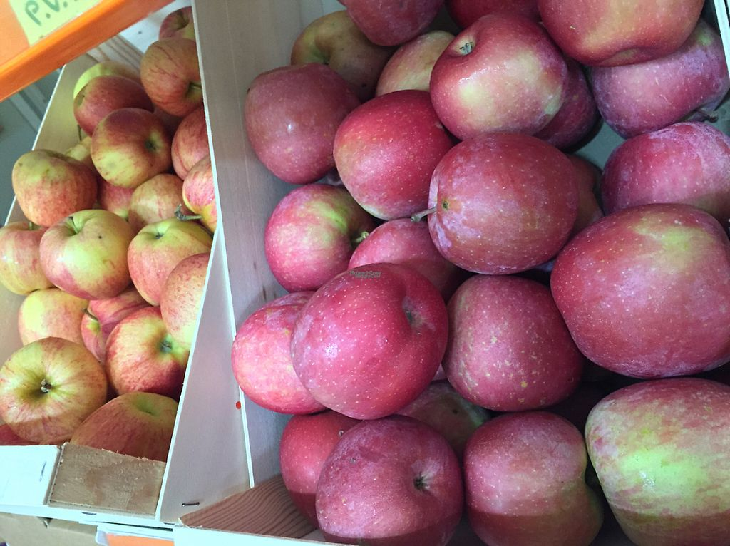 """Photo of CLOSED: Etenoha  by <a href=""""/members/profile/MyVeganJoy"""">MyVeganJoy</a> <br/>fantastic local organic apples in December 2016 <br/> December 6, 2016  - <a href='/contact/abuse/image/53856/197745'>Report</a>"""