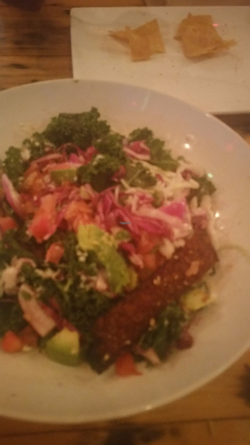 """Photo of Tucos Taco Lounge  by <a href=""""/members/profile/LPT"""">LPT</a> <br/>Kels Cesar Chavez Salad <br/> November 11, 2016  - <a href='/contact/abuse/image/53957/188736'>Report</a>"""