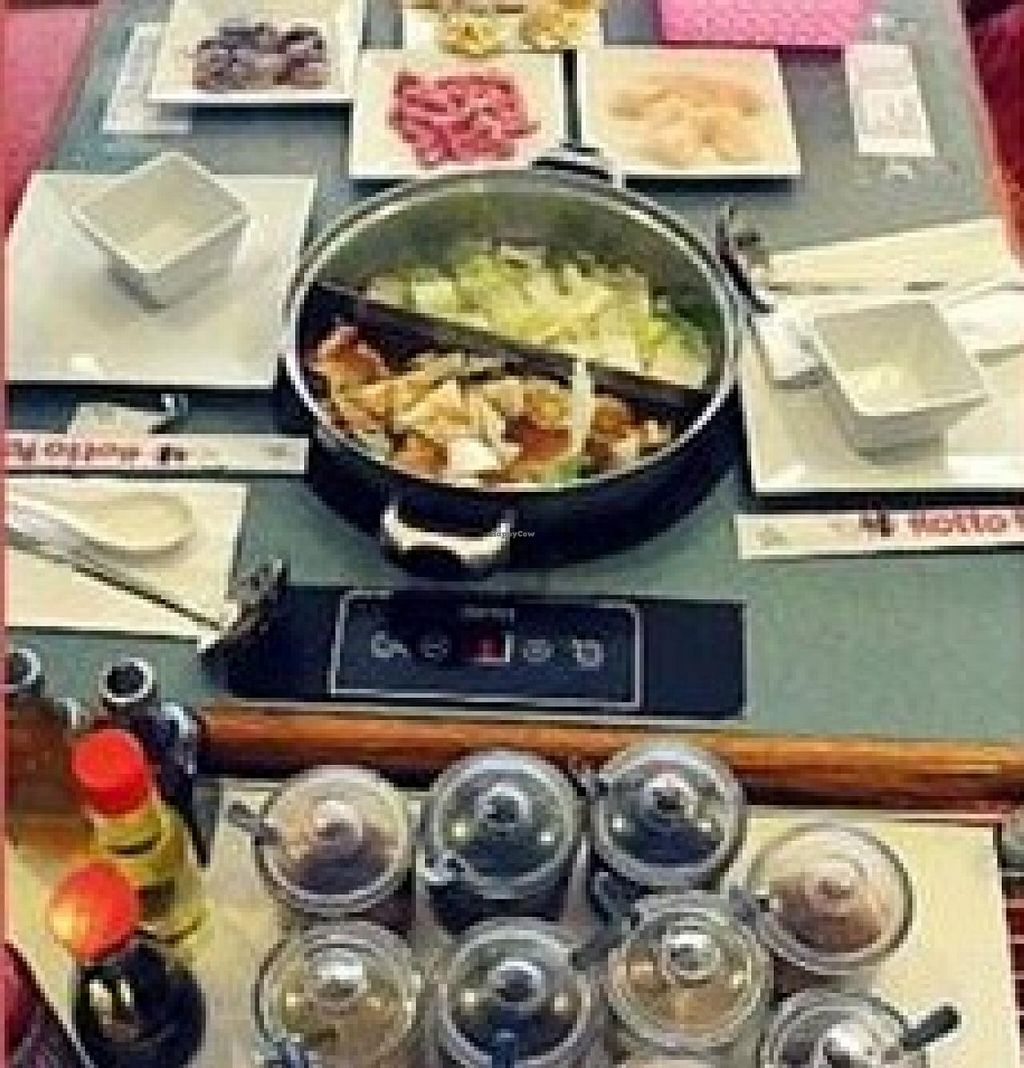 "Photo of Hotto Potto  by <a href=""/members/profile/community"">community</a> <br/>Hotto Potto <br/> January 2, 2015  - <a href='/contact/abuse/image/53988/89330'>Report</a>"