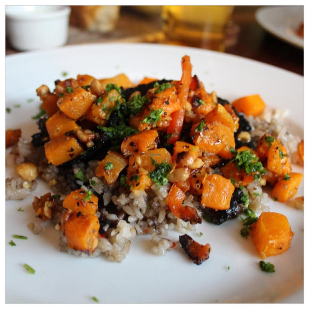 """Photo of The Red Lion Pub  by <a href=""""/members/profile/kezia"""">kezia</a> <br/> 'Butternut squash, hazelnut, mushroom fricase with rice' - Vegan <br/> December 22, 2014  - <a href='/contact/abuse/image/54003/88499'>Report</a>"""